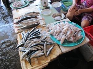 Fish Market / Marché au poisson