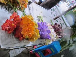 Marché au fleurs / Flowers market